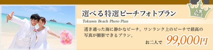 選べる特選ビーチフォトプラン 透き通った海に静かなビーチ。ワンランク上のビーチで最高の               写真が撮影できるプラン。