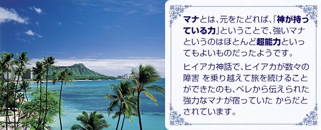 ハワイでのビーチフォト後には是非とも寄ってみたい