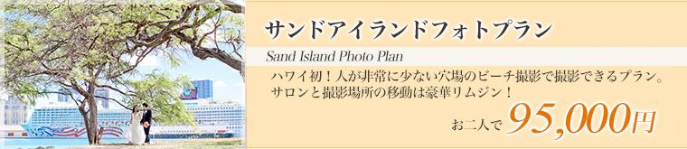 サンドアイランドフォトプラン・大きな木と船をバックに